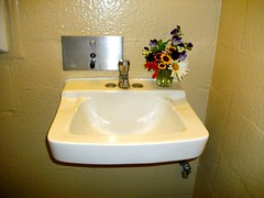 Dismal Nitch Rest Area - the restroom had flowers!