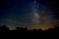 Night Sky XV