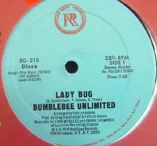 lady bug 12a
