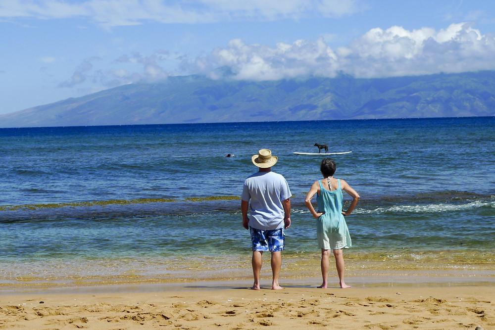 Hawaii413