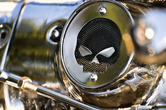 Grilled Skull (Light Echoes) Tags: summer skull nikon pennsylvania mortorcycle hatboro d90 dmk moonlightmemories hatboroautoshow