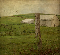 August Afternoon (raewillow) Tags: summer texture field barn rural landscape afternoon magicunicornverybest sbfmasterpiece sbfgrandmaster