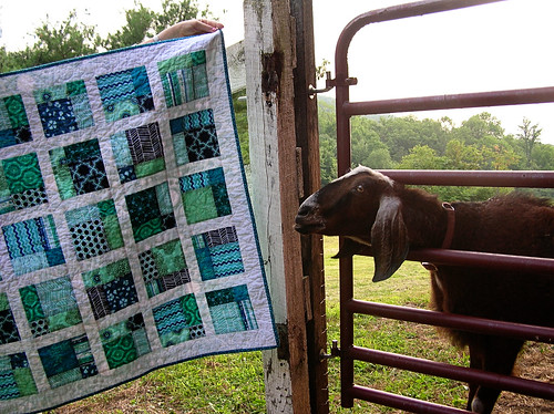 Rudy and the baby quilt