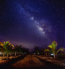 path to the universe (todos santos, mexico) (max vuong) Tags: panorama night stars mexico space resort galaxy sur astronomy baja cabosanlucas palmtress milkyway todossantos vertorama ranchopescadero lenspath maxvuong
