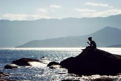 Still day (Techuser) Tags: beach nature topv111 topv555 topv333 topv999 topv444 topv222 ilhabela topv888 sonyt200 daniophyta