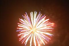 fireworks 2010 092 (TaylorAW5) Tags: fireworks2010