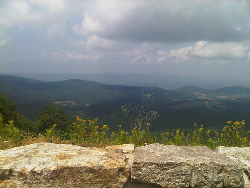 Skyline Drive. There was a Bear (but not in this photo).
