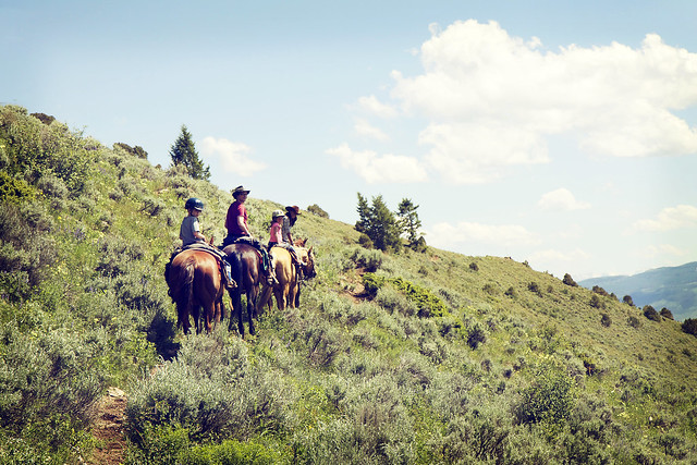 Black Mountain Colorado Dude Ranch horse ride ridge