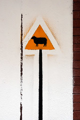 danger: sheep.
