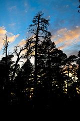 Sunset (HikerDude24) Tags: california park camping trees sunset summer sky mountain mountains nature clouds landscape outdoors nikon shadows state dusk hiking backpacking d5100