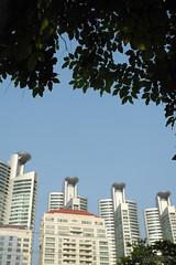 Bangkok (-AX-) Tags: thailand bangkok tailandia thalande lan thailandia tailndia thi  krungthep   tayland thaimaa tajlandia  khlongtoei thaifld    tailndia