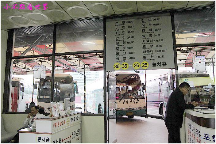 小法國村 (3).jpg