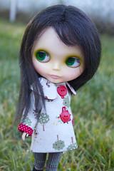 Norma in her new coat!