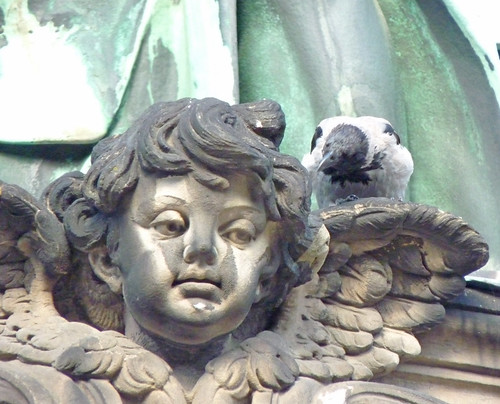 Berlinerdom cherub with pigeon