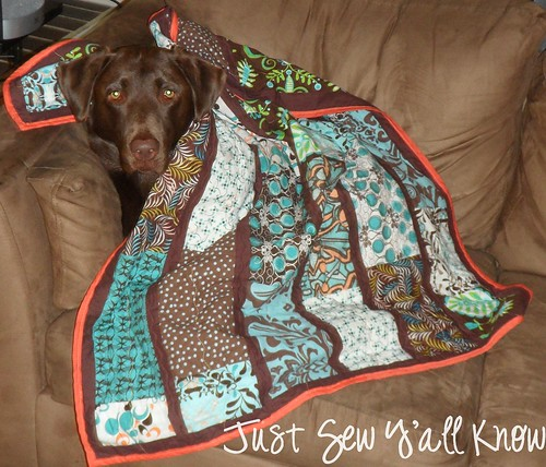 Dixie and her quilt by JustSewY'allKnow