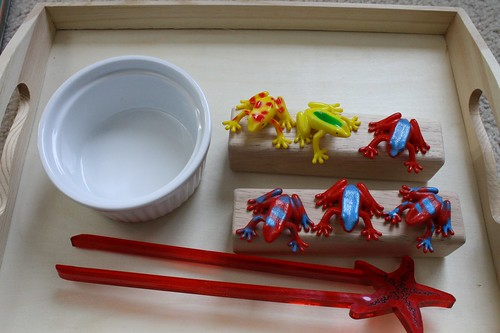 Using Chopsticks to Transfer Frogs to the Log (Photo by Julie at the Adventures of Bear)