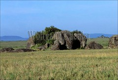 10006675 (wolfgangkaehler) Tags: africa rock landscape tanzania landscapes rocks african plains serengeti grassland plain grasslands rockformations rockformation eastafrica kopje kopjes grassplains serengetitanzania serengetiplain grassplain
