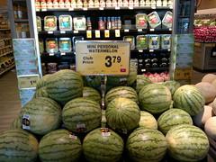 Personal Watermelon?
