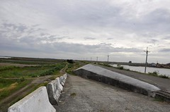 七股校區位於曾文溪北岸出海口,圖中水泥路是河提便道,右方為七股校區,左方為曾文溪與海埔新生地。圖片:陳香蘭/攝。