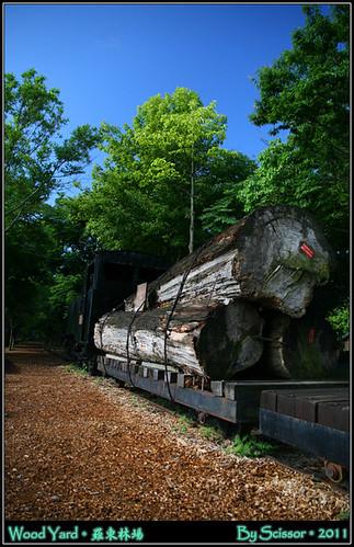載著太平山木頭的火車