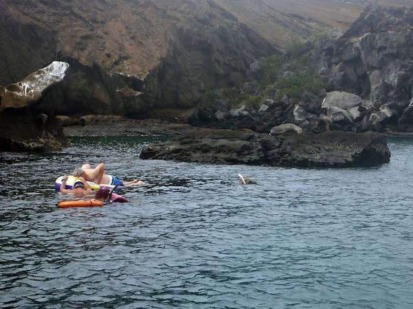 RYALE_Galapagos_Underwater-32