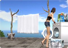 25/07/2011 (ARGRACE) Tags: photo diary secondlife washing argrace