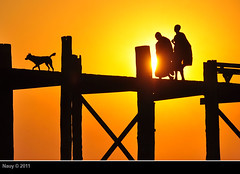 The road home (na-uy) Tags: wood bridge light sunset orange dog chien sun silhouette licht soleil wooden ancient nikon asia asien southeastasia sdostasien sonnenuntergang lumire burma buddhist magic coucher monk buddhism hund pont myanmar asie southeast moment brcke holz sonne teck teak untergang bouddhisme mnch nauy amarapura ubeinbridge birmanie buddhismus moine magique d90 magisch bouddhiste myanma honghn asiedusudest earthasia ngnam minin