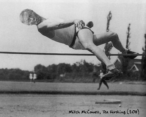 TEA HURDLING by Colonel Flick