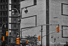 Lights (bartholowaty | Photography) Tags: new york city nyc trip travel usa ny newyork color colour tourism apple architecture square us state manhattan united central empire metropolis splash metropolitan 2011