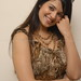 Saloni-Photoshoot_21