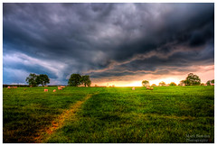 Stormy Skies, Great Ayton. (Stanegg) Tags: sunset green field rain animal sunrise canon landscape power sheep cleveland lightning raining thunder hdr greatayton 500d stormyskies northeastengland
