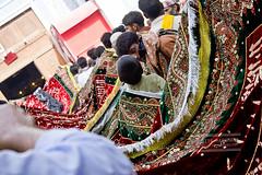 IMG_9510 (Anahita Hashmani) Tags: pakistan tradition malang sufi sindh urs beggers dhol sufisaint malangs qalandar fakirs pakistanheritage sehwanshareef lalshehbazqalandar jhuleylal