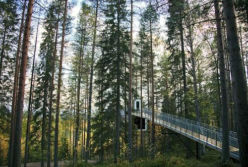 tree hotel3