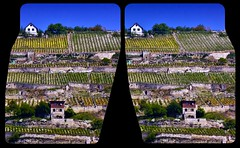 The vineyard :: Stereoscopic Cross View 3D :: (Stereotron) Tags: 3d 3dphoto 3dstereo 3rddimension spatial stereo stereo3d stereophoto stereophotography stereoscopic stereoscopy stereotron threedimensional stereoview stereophotomaker stereophotograph 3dpicture 3dglasses 3dimage crosseye crosseyed crossview xview cross eye squint squinting freeview sidebyside sbs kreuzblick hyperstereo twin canon eos 550d yongnuo chacha kitlens 1855mm tonemapping hdr hdri raw cr2 quietearth europe germany saaleunstruttal naumburg freyburg sachsenanhalt vine wine growing estate area winery vinyard 3dframe airtightframe fancyframe floatingwindow airtight frame spatialframe stereowindow window 100v10f