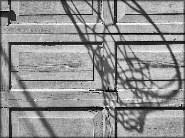 P1160613_net_shadow