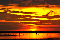 Sunset in beach  (Vincent_Ting) Tags: sunset sky water windmill silhouette clouds taiwan windmills  formosa   windturbine wetland  windturbines        formose