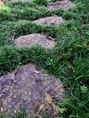 022 (Nakamikado) Tags: green japan garden japanesegarden pavement steppingstones tatsuymuchacho stoneduluce