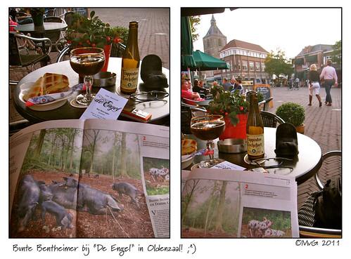 """Bunte Bentheimer bij """"De Engel"""" in Oldenzaal! ;^) by Marcel van Gunst"""