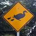 Os sinais australianos são um sarro