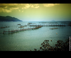 Nha Trang _Vit Nam (HoangHuyManh images) Tags: travel copyright mountain beach nhatrang vitnam superhearts flickrsilveraward platinumheartaward 10goldsuperhearts doublyniceshot doubleniceshot tripleniceshot mygearandme mygearandmepremium mygearandmebronze mygearandmesilver hoanghuymanhimages goldstarawardlevel3 goldstarawardlevel2 ringexcellence dblringexcellence thebestoftripleniceshot doubleringexcellence level1photographyforrecreation goldstarawardlevel4 theverybestpeoplechoice goldstarawardlevel5 level3photographyforrecreation level4photographyforrecreation level5photographyforrecreation level2photographyforrecreation artistoftheyearlevel2 qualifiedmemberonly qualifiedmemberonlylevel2 qualifiedmemberonlylevel3 mygearandmebronz fineplaitnum platinumpeaceawardlevel2 yourarthastouchedtheworldlevel4 finestdiamondlevel3 6plusfinestdiamondawardlevel4 platinimheartshalloffame 10platinumhearthalloffame universalelitelevel5 level6photographyofrecreationdiamond supremepeopleschoicelevel3 theverybestofpeacegrouplevel4 worldpeacehalloffamelevel3 6supremepeoplechoice flickrsuperstartalentlevel2