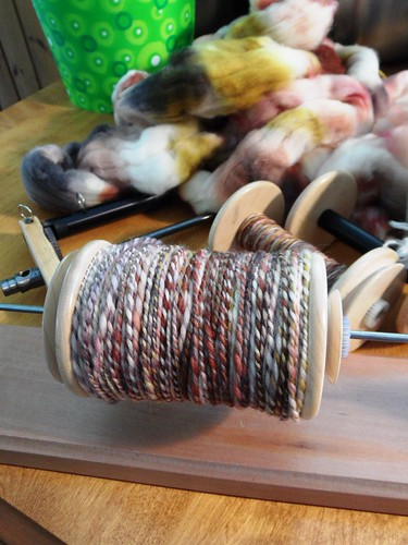 TdF day 16-Petey Pete-sw merino-2-ply- 120yds-8
