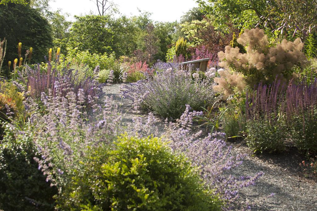 Seat in teh Garden