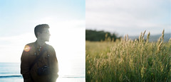 Just like the sun and the moon and the stars at night (cindyloughridge) Tags: film grass mediumformat diptych hasselblad500cm magichourlight kodakportra160 doublecappuccino