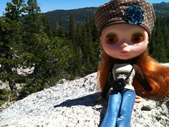 Clementine up in the Sierra mountains
