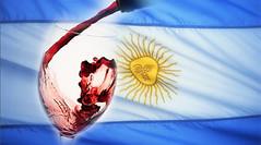 Bodegas en alerta: por la fuerte suba de costos, caen las ventas de vino al mundo