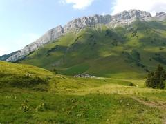 Col des Aravis 050