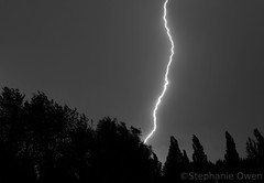 Lightning (MoshersMoll) Tags: trees sky blackandwhite storm monochrome weather night skyscape evening dusk thunderstorm lightning thunder nightfall weer bliksem achrome