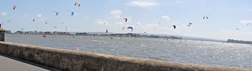 So many Kite's at Poole Harbour