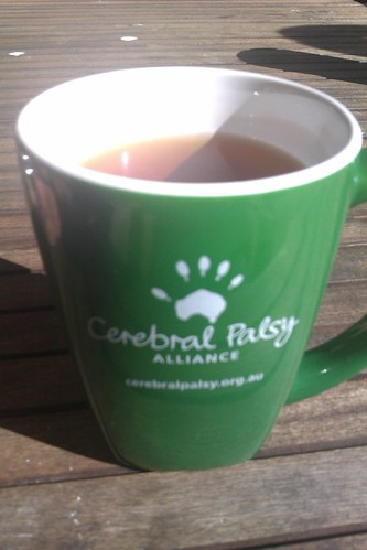 August 1 - Orientation at the Cerebral Palsy Alliance