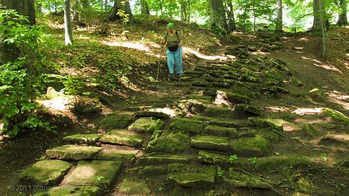 DS_20110708_00086 drumul pavat vechi de 2000 de ani de la Piatra Roşie